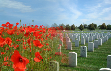 WWIDay2013_Poppies.jpg